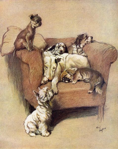 Illustration by Cecil Aldin showing six dogs jostling for space on a cosy armchair. Date: 20th December 1933