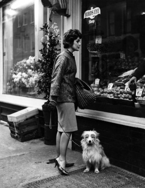 An attractive housewife does a spot of window shopping outside the fruiterers, while her bored pooch waits for her. Date: 1960s