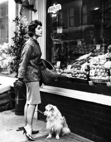 A young housewife, with her dog on its lead and her wicker shopping basket over her arm, looking at the display in a greengrocer's shop window. Date: 1960s