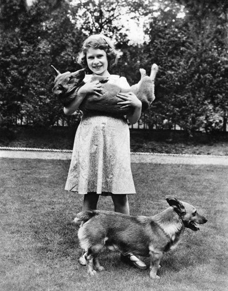 Princess Elizabeth posed with her two Welsh corgis, Jane (Lady Jane, in her arms) and Dookie. (Golden Eagle) Date: 16th December 1936, p511