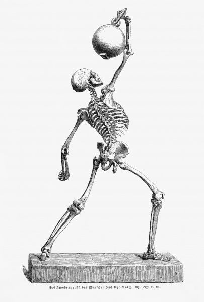 A human skeleton in movement, holding a heavy object above its head