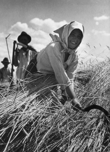 A happy girl scything the harvest on a farm in Hungary. Date: 1930s