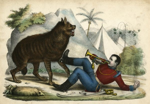 An aggressive hyena forces a sentryman to call for help. Date: circa 1845