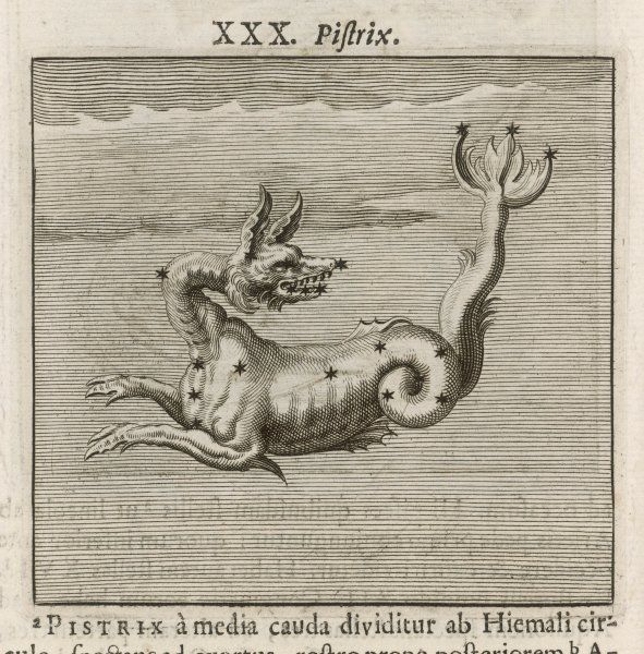 The constellation of PISTRIX, the sea monster
