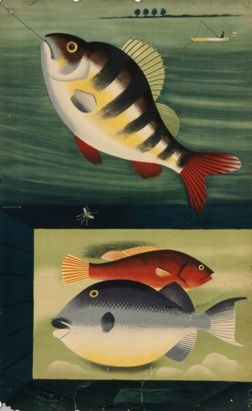 Illustration of colourful fish on a fishing line, and swimming in the sea