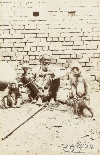 A seated Indian street musician/entertainer/beggar holding a small double-ended drum with attached string beaters, with two performing monkeys tethered by two ropes