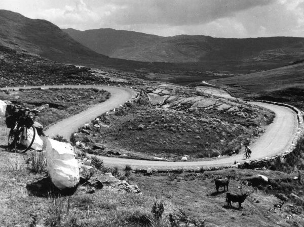 A fine impression of cyclists and cattle on one of the S- bends of the Tim Healy Pass, County Cork, Ireland. Date: 1950s