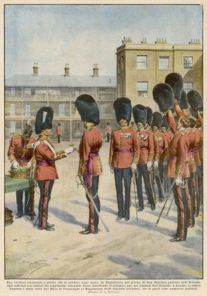 The duke of Connaught presents Irish Guardsmen with a sprig of shamrock each