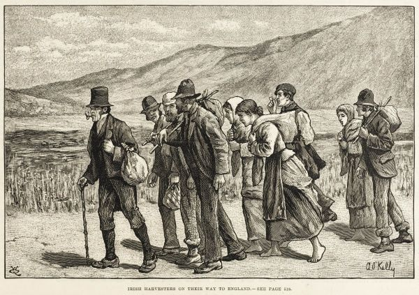 Irish harvesters on their way to England