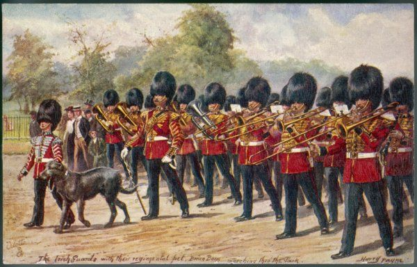 The band of the Irish Guards march through Hyde Park with their regimental mascot, an Irish Wolfhound, of course. Its name is Brian Boru