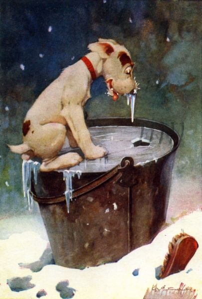 Dog with his nose frozen after dipping it in an icy bucket of water. Date: circa 1920