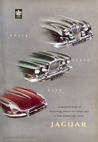 Advertisement for Jaguar cars showing the bonnet and grill of three different models offering 'grace, space and pace' and 'a special kind of motoring which no other car in the world can offer&#39