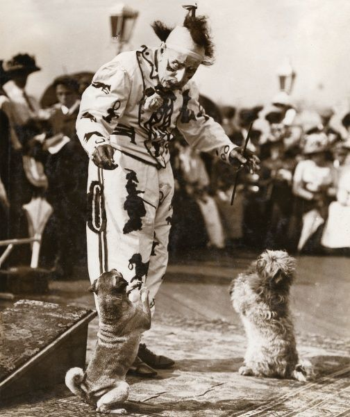 James Doughty of Brighton, at the time of this photograph the oldest clown in England, about to celebrate his 94th birthday. Seen here in costume with two of his performing dogs. In 1911 at the age of 93 he married a woman of 25, Alice Zilpah