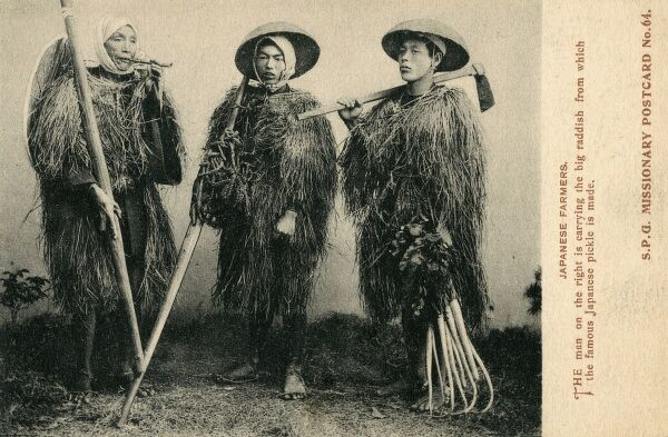 Japanese Farmers - the farmer on the right is holding a large bunch of radishes. They are all wearing traditional agricultural outfits made ot reeds and hemp. Date: circa 1910s