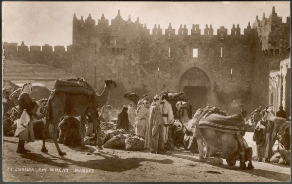 Traders have come from far and wide on their camels to attend the wheat market, held by the city walls