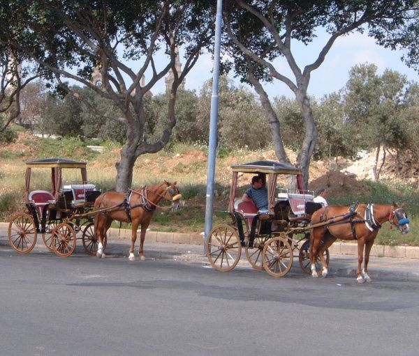 At Valletta two karrozin carriages wait by the Upper Barracca Gardens beside the City Gate