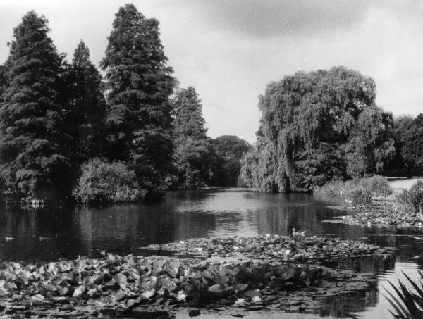 The eastern end of the lake, Royal Botanical Gardens, Kew, Surrey, England. Date: 1930s