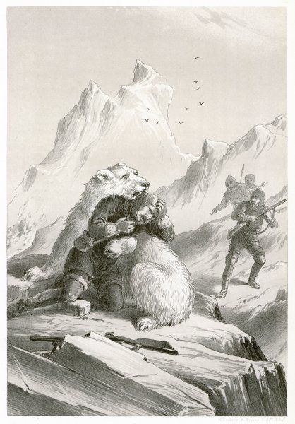 During Koldewey's expedition in the 'Germania', one of his crew members, Dr Borgen, is carried off by a polar bear, but he is later rescued