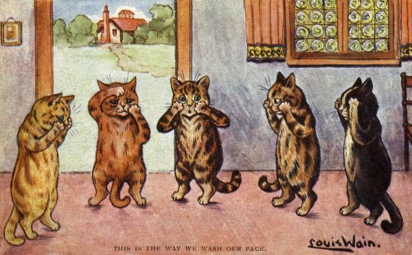 This is the Way We Wash Our Face. Artist: Louis Wain. A group of cats washing their faces Date: 1904