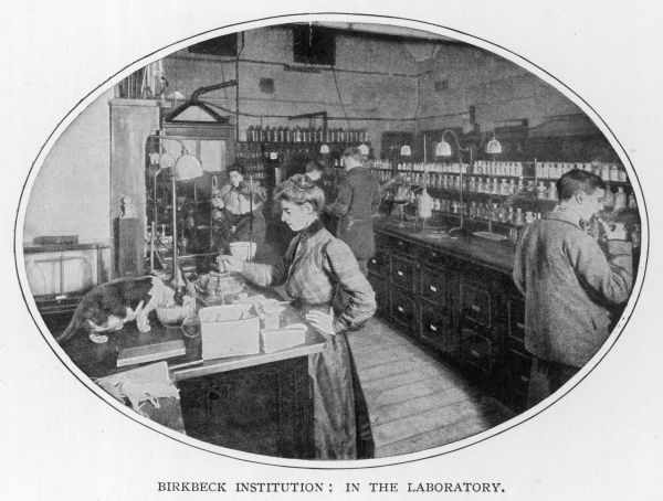 Laboratory scene at the Birkbeck Institution, considered one of the best equipped in London