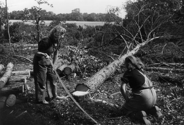 Two 'Land Girls', part of the Women's Land Army during World War Two, sawing large felled trees into logs with manual saws. Date: early 1940s