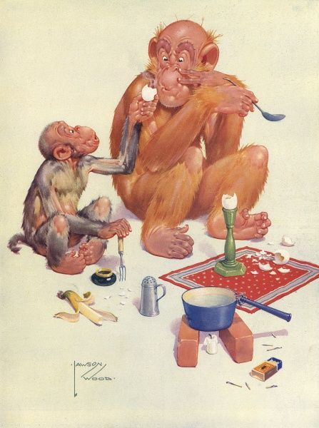 Humorous illustration by Lawson Wood showing a small monkey and the famous orang utan character called Granpop eating boiled eggs