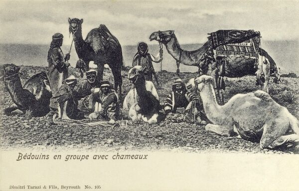 Lebanon - Bedouins with their camels Date: circa 1910s