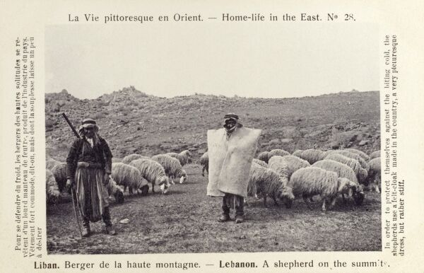 Shepherds on the summit of Mount Lebanon. In order to protect themselves against the biting cold, these Lebanese shepherds use a felt-cloak made in the country. As the card puts it: 'A very pictureseque dress, but rather stiff'! Date