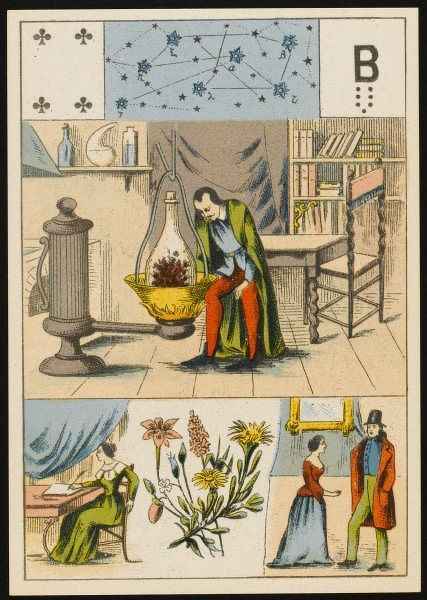 An alchemist grows a mysterious and doubtless magical plant, depicted on a fortune-teller's card