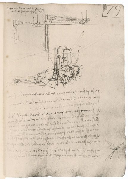 LEONARDO DA VINCI Sketch of a flying machine, in which a recumbent man drives flapping wings with his legs