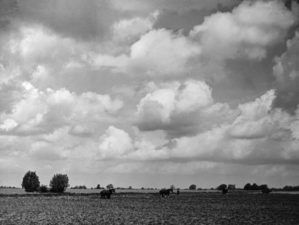 The flat plain and a rolling sky : this picture is typical of south Lincolnshire, England and was taken near Boston, on the Boston to Heckington road. Date: 1930s