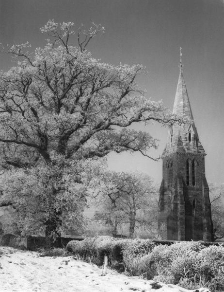 Winter in the pretty village of Little Brington, Northamptonshire, England, with snow and frost-covered trees and the lonely tower and spire of the dismantled church Date: 1960s