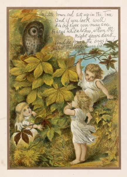 'THE LITTLE BROWN OWL sits up in the tree, and if you look well his big eyes you may see !&#39