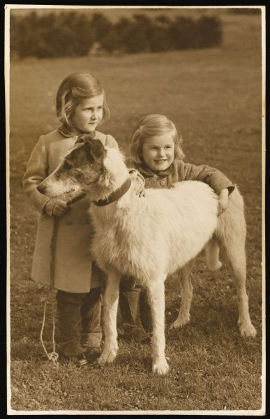 Two little girls, probably sisters, pose with their dog in a field