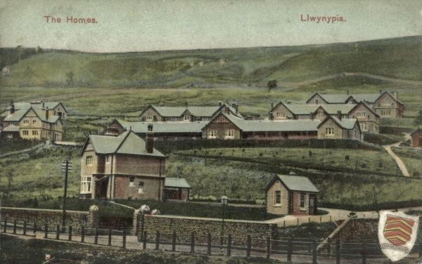 The Llwynypia Homes, Rhondda, South Wales, were opened in 1903 as a subsidiary workhouse for the Pontypridd Poor Law Union. An infirmary was added in 1909, and in 1927 the site was renamed Llwynypia Hospital