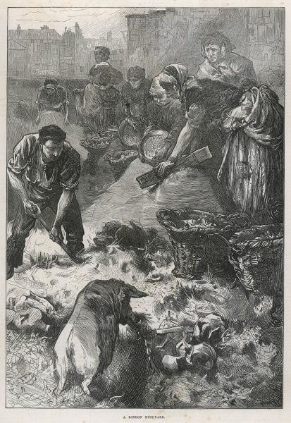 A pig rummages in a London dust-yard, while a man digs through the rubbish and women sieve the dust hoping to find things of value