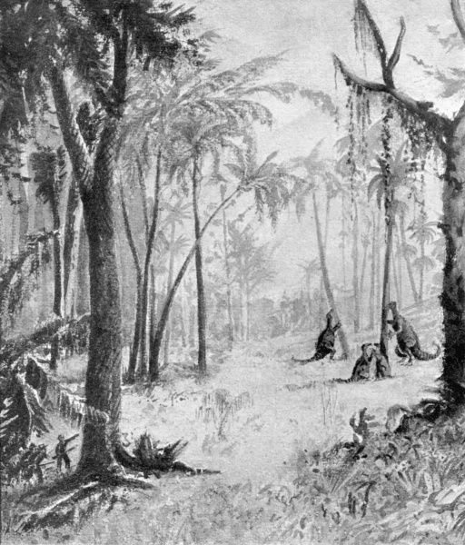 The glade of the iguanodons