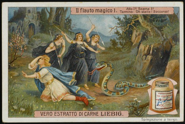 (The Magic Flute) Act 1, Scene 1 : Tamino is rescued from a pursuing snake by three ladies who kill the creature, and admire the hero's handsome features