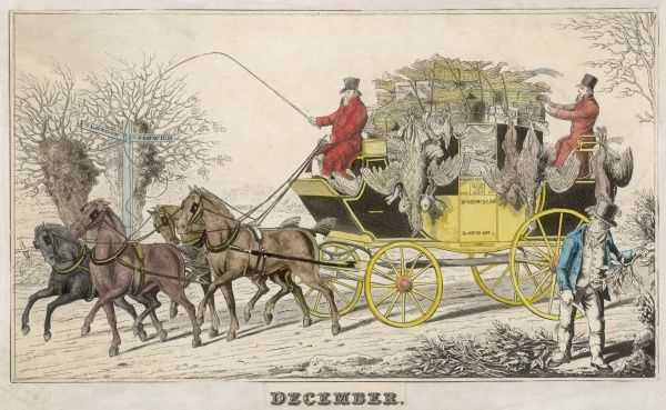 ' DECEMBER ' The Norwich to London mail coach transports a large cargo of game, including turkey rabbits, partridge and pheasant