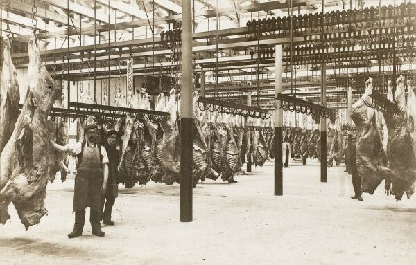 A warehouse alongside the Manchester Ship Canal with rank upon rank of hanging beef caracasses awaiting transportation by train to London