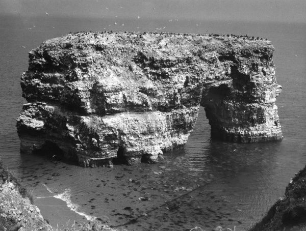 Marden Rock, near South Shields, County Durham, England. Date: BC