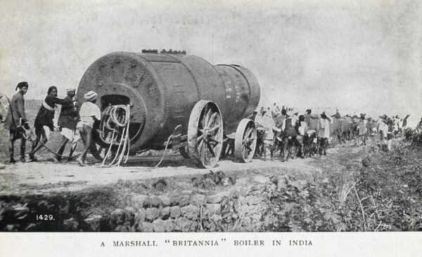 The transportation of a Marshall 'Britannia' boiler across the Indian countryside by a vast team of oxen and men