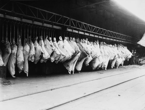 Meat in storage in the London docks on the runway from the ship during World War I