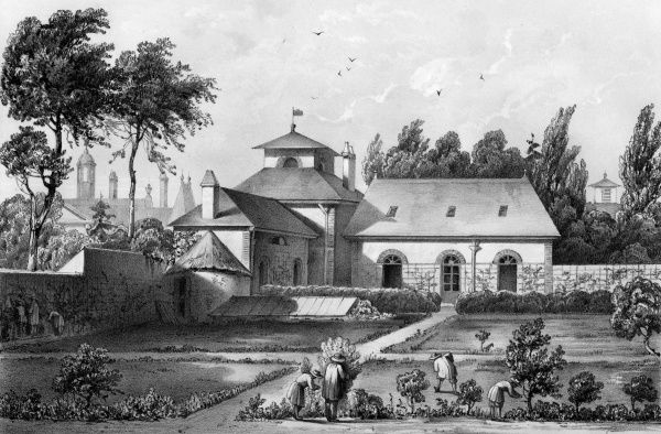 METTRAY (near Tours) Open agricultural and industrial colony for juvenile offenders, 1839-1939 : BOYS LEARNING HORTICULTURE Date: circa 1850