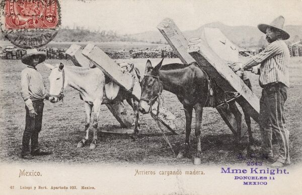 Carriers loading wood onto mules Mexico Date: circa 1905