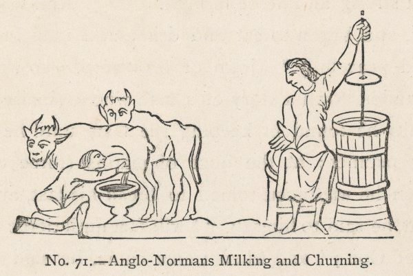 Milking & Churning