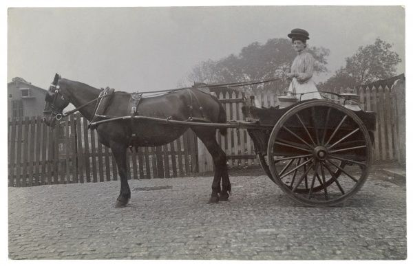 A milkwoman poses for the photographer before setting out on her rounds in a two- wheeled horse-drawn cart holding two churns from which she will ladle out milk