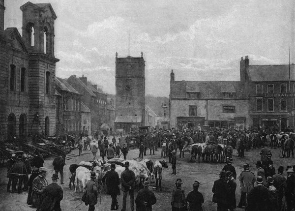 Cattle for sale in the market place at Morpeth, Northumberland Date: 1895