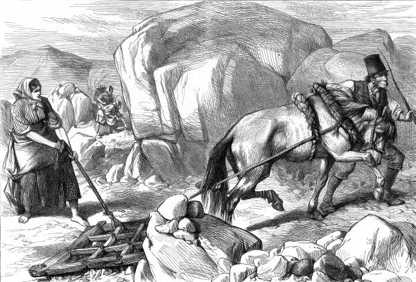 Sketch from Ireland showing the harrowing difficulty of cultivating on a mountain farm in County Mayo. A peasant man and woman use a horse in their attempts to plough the rocky slopes, while two women are engaged in gathering in the background