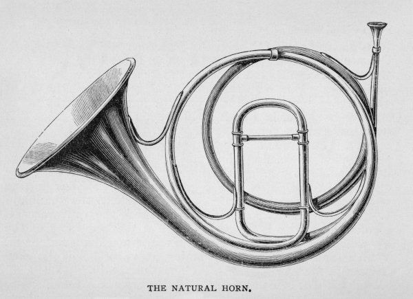 The NATURAL HORN - a conical tube of brass, some four metres in length but coiled for convenience
